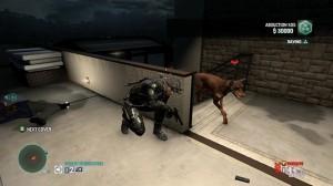 Le chien, meilleur ami de l'homme, pire ennemi de l'espion.